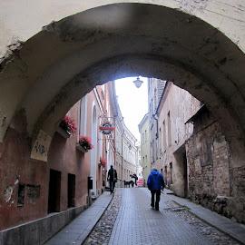Old Town by João Ascenso - City,  Street & Park  Historic Districts ( vilnius )