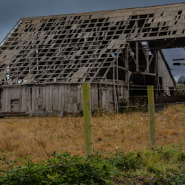 Barn by Jeanne Knoch - Buildings & Architecture Decaying & Abandoned