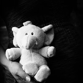 Elephant Memories by Gabrielle Yap - Artistic Objects Toys ( hand, black and white, elephant )
