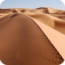 Desert Live Wallpaper
