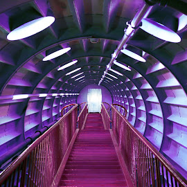 Atomium for Alzheimer by Sara Kager - Buildings & Architecture Other Interior ( lights, interior, building, magenta, stairs, stairway, lighting, purple, staircase, white, pink, architecture, creativity, art, artistic, mood factory, color, fun )