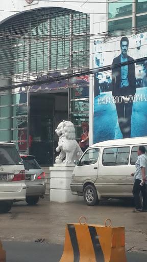 S.P.C Lion