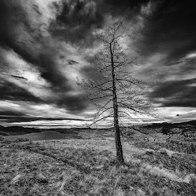 Hill Top Vista by Garry Dosa - Black & White Landscapes ( clouds, hills, b&w, sky, black and white, landscape,  )