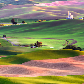 Rolling Hills in Palouse, WA by Peter Cheung - Landscapes Mountains & Hills ( palouse, washington, rolling hills )
