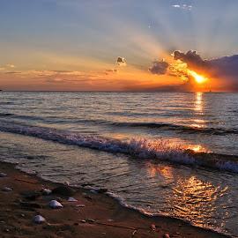 Sunset by Neli Dan - Landscapes Sunsets & Sunrises ( sea, light, sun, blue, orange. color )