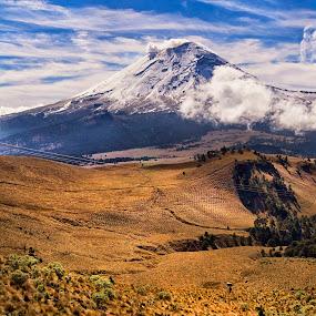 Volcano and field by Cristobal Garciaferro Rubio - Landscapes Prairies, Meadows & Fields ( popo, mexico, snow, popocatepetl, snowy volcano )