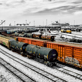 Railyard by RomanDA Photography - Transportation Trains ( water, baltimore, flowers, spring, trains )