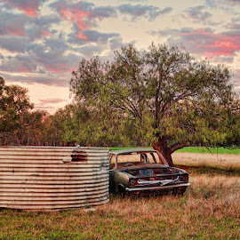 Barden's Wreck by Carole Pallier Cazzazsnapz - Landscapes Prairies, Meadows & Fields ( car, field, farm, paddock, grass, wreck, tank, crop, country )