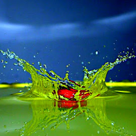 water boom by Slobodan Bobo Kovac - Nature Up Close Water ( water, fruit, drops, summer, strawberry, rain )