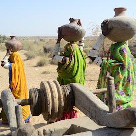 Tharparkar women finding water for live by Janali Laghari - News & Events Health ( tharparkar, hyderabad, janali )