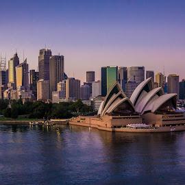 My beautiful Sydney by Jose Rojas - City,  Street & Park  Skylines ( sydney habour, landscape, opera house, sydney, city )