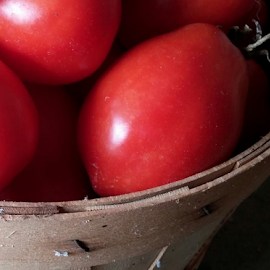 t'mates by Howard Guldi - Food & Drink Fruits & Vegetables