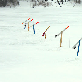 Ice Fishing rods by Paula Weston - Artistic Objects Other Objects ( canada, ice fishing, northern canada, fishing,  )
