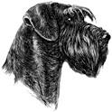 HundData icon