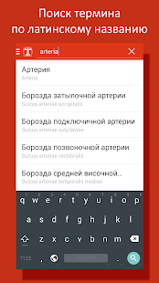Free Download Cito! Анатомия человека APK for Samsung