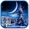 App Winter Night Wallpaper APK for Kindle