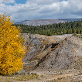 Leadville mining by David Umphfleet - Landscapes Mountains & Hills ( leadville, mining, colorado, aspens, faal )