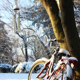 Snowy Bike by Giles Perkins - Transportation Bicycles ( winter, bike, season, snow, weather )