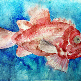 My name is red by Artica Arta - Painting All Painting ( water, watercolor, fish, nature up close, painting )