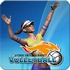 VTree Entertainment Volleyball