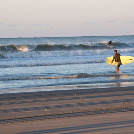 by Brooke Green - Landscapes Beaches ( water, sand, surfing, waterscape, sunset, ocean, beach )