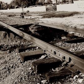 by Tom Carson - Transportation Railway Tracks ( railroad, obsolete, damage, washout, train, tracks, eroailn, forgotten )