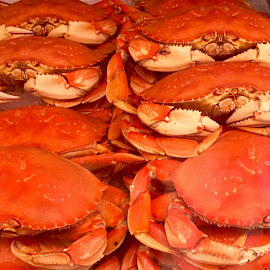Crabs by Lope Piamonte Jr - Food & Drink Eating