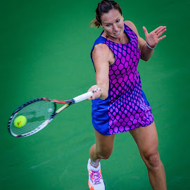 Jelena Janković US Open 2014 by David Freese - Sports & Fitness Tennis ( tennis, jelena janković, us open )