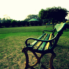 Alone Among Green by Anubhab Dey - Artistic Objects Furniture ( abstract, bench, green )