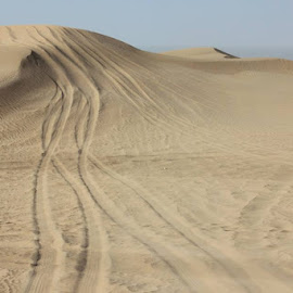 Desert Safari DXB by Divya Dhaneesh - Landscapes Deserts