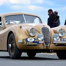 Gold on wheels by Editha Bonneau - Transportation Automobiles