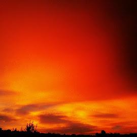 Sunset by Stephen Schwartzengraber - Landscapes Cloud Formations ( clouds, orange, sky, sunset, beautiful,  )