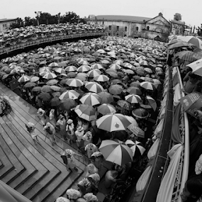 Basilica Mass by Ferdinand Ludo - Black & White Street & Candid ( basilica mass, rainy day, in preparation for sinulog 2014, feb 2014,  )