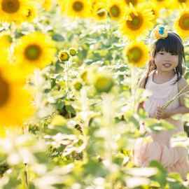 sunflower girl by Phooiyoon Lay - Babies & Children Toddlers
