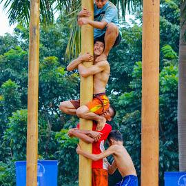Team Work by Nizom Ali - News & Events World Events ( panjat pinang )