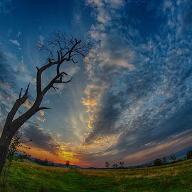 Feeling high by Marius Turc - Landscapes Prairies, Meadows & Fields