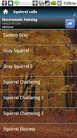 Screenshot of Squirrel Calls