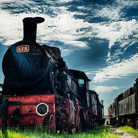 Old beast by Cristian Puscasu - Transportation Trains ( history, old, sky, hdr, blue, train, museum )