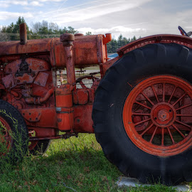 Orange Tractor by Calvin Morgan - Transportation Other ( farm, hdr, equiptment, rust, antique, nikon d7000, tractor )