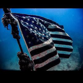 had a amazing dive here are some photos by Isidro Pentzke - Abstract Light Painting ( KeyLargo, Floridakeys, divedivedive, ocean, dive, wreckdive, safetystop, Advancedopenwater, stressandrescuediver, SPIEGELGROVE, Nikon, Nikonlife, inphotos, darkwaters, ocean, livethedram, underwaterphotography )