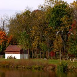 Autumn Glory by Dougetta Nuneviller - City,  Street & Park  City Parks ( park, autumn, fall, lake, leaves )