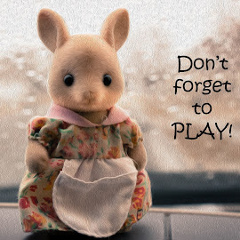 Don't forget to play by Denise Johnson - Typography Captioned Photos ( text, bunny, don't forget to play, oil paint, photoshop )