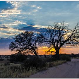 Sunrise by Wessel Badenhorst - Landscapes Deserts