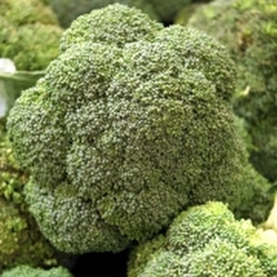Witlof Broccolisoep