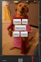Screenshot of Photo Gallery Widget