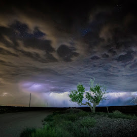 Thunder Tree by John Skiba - Landscapes Weather ( lightning, tree, weather, night, storm )