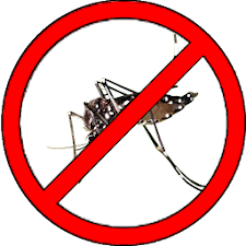 War On Dengue