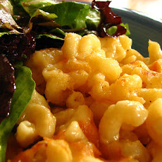Baked Macaroni and Cheese III
