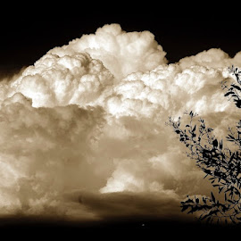 Thunder Coming by Dean Mayo - Landscapes Cloud Formations ( thunder, sepia, sky, cloud, air, storm )