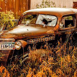 Sunset on a Old Abandoned Car by Ken Brown - Transportation Automobiles ( car, van, old, grass, automobile, wheels, vehicle, chrome, master deluxe, rusty, landscape, chevy, modified, weathered, broken, dilapidated, headlights, glass, rust, antique, decaying, decrepit, abandoned )